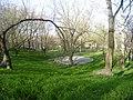 Сейчас на месте бывшего Зеленого театра в парке им. Т. Шевченка в Днепропетровске.jpg