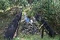 Фото путешествия по Беларуси 324.jpg