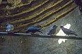 کاروانسرای دیرگچین قم، با قدمت ساسانی، میراث ملی 22.jpg