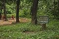 সেকশন-৩৬ গুস্তাডা, এভোকাডো, পিতরাজ, কৃষ্ণচূড়া.jpg