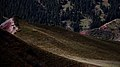 塔克拉克牧场 - panoramio (5).jpg
