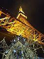 東京タワー - panoramio (4).jpg