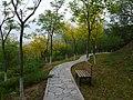 林间步道 - Footpath in Forest - 2015.05 - panoramio.jpg