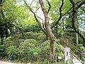 港区立亀塚公園(2) - panoramio.jpg