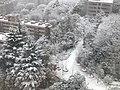 雪 東京ガーデンテラス紀尾井町 2018.1.22 (39125049164).jpg