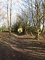 -2019-03-05 Footpath between East and West Runton, Norfolk (5).JPG