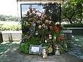 05441jfMidyear Philippine Orchid Show Quezon Memorial Circlefvf 16.JPG