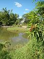 07950jfPampanga River banks Candelaria Welcome Calumpit Bulacan Roadsfvf 03.JPG