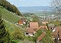 080426 ch wienacht talblick weinberg (cropped).jpg