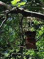 144 Casa d'ocells al camí de l'Ermita, Sant Miquel del Fai.JPG