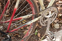 15-07-20-Fahrräder-in-Teotohuacan-N3S 9518.jpg