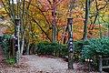 171125 Kobe Municipal Forest Botanical Garden11s3.jpg