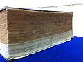 1894 Thai Bible.jpg