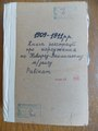 1909-1911 годы. Метрическая книга евреев Новоград-Волынского равината. Рождение.pdf