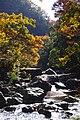 191123 Settsu-kyo Gorge Takatsuki Osaka pref Japan02s5.jpg