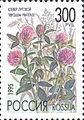 1995. Марка России 0219 hi.jpg