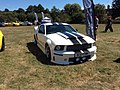 2007 Ford Mustang (SC07TMH).jpg