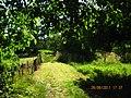 2011-06-26-173714 49,045786, 8,018030.JPG - panoramio.jpg