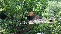 2013-07-13 Planter Road Jackson Creek Bridge from Bank.jpg