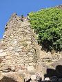 2013-08-18T16-30-45 Châteaux de Lastours 32.jpg
