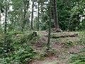 20140815050DR Karsdorf (Rabenau) Dippoldiswalder Heide Katharinenkapelle.jpg