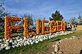 2014 Kürbisfestival - Jucker Farm (Juckerhof) 2014-10-31 14-47-36.JPG