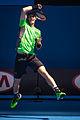 2015 Australian Open - Andy Murray 4.jpg