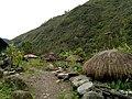 20170904 Papouasie Baliem valley papou village 1.jpg