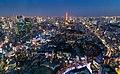 2019 Tokyo Tower at night 01.jpg