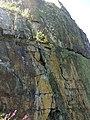 35-211-5004 Казавчинські скелі Лютинська 16.jpg