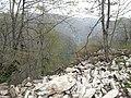 41090 Servetiyecami-Başiskele-Kocaeli, Turkey - panoramio (1).jpg