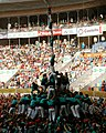 4de9fa-Castellers de Vilafranca-Concurs2010.jpg