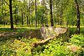 71-101-5018 Cherkasy park Sosnivsky DSC 2236.jpg