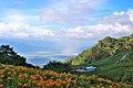 983, Taiwan, 花蓮縣富里鄉新興村 - panoramio (4).jpg