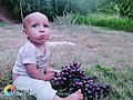 A child from the Middle Atlas Mountains.jpg