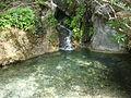 A pond in Turkey.JPG