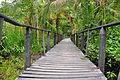 A walking bridge in the Cahuita natural reserve.jpg