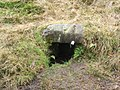 A well near Carman Reservoir - geograph.org.uk - 1099240.jpg