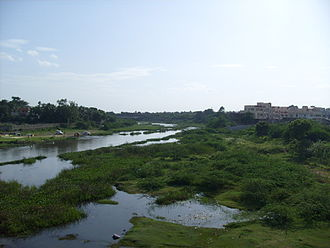 Adyar River - A view of the Adyar River from the Manapakkam Bridge