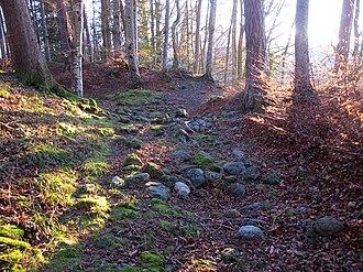 Gurten (mountain) - Ruins of the Ägerten castle