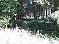 Ahne, 3, Dörnberg, Habichtswald, Landkreis Kassel.jpg