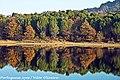 Albufeira da Barragem de Fagilde - Portugal (6711154965).jpg