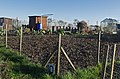 Allotments, Swanland - geograph.org.uk - 677449.jpg