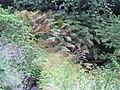 Aménagement paysager, dans les Jardins de Métis, Grand-Métis, Qc - panoramio.jpg