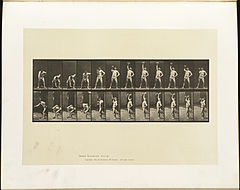 Animal locomotion. Plate 320 (Boston Public Library).jpg