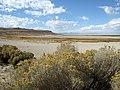 Antelope Island, Salt Lake, Utah. Юта, Соединённые Штаты Америки - panoramio.jpg