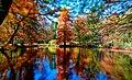 Arboretum, Volčji potok foto, Grega Pirc - panoramio.jpg