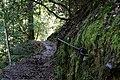 Around Geroldsau Waterfall 2020-03-13 04.jpg