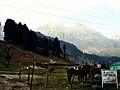 Aru Valley, Kashmir.jpg