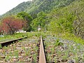 Asanai, Iwaizumi, Shimohei District, Iwate Prefecture 028-2231, Japan - panoramio (1).jpg
